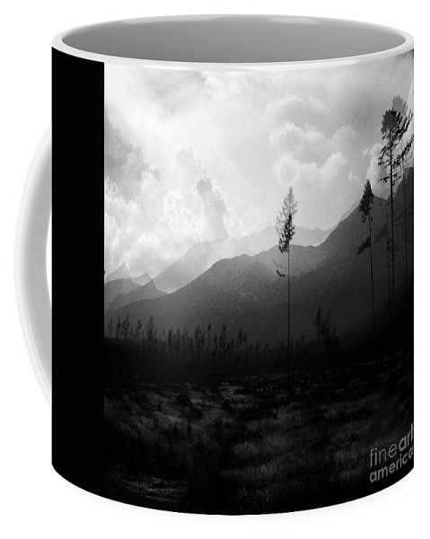 Black-white Coffee Mug featuring the photograph Impressions by Angel Ciesniarska