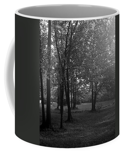 Feild Coffee Mug featuring the photograph In A Dream by Hannah Breidenbach