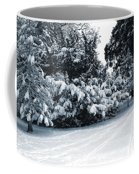 Blue Coffee Mug featuring the photograph In A Winter Park by Svetlana Sewell