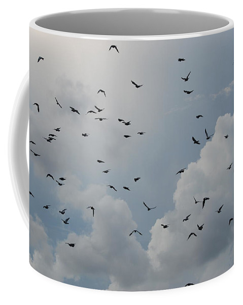 Birds Coffee Mug featuring the photograph In Flight by Rob Hans