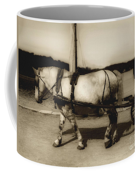 Horse Coffee Mug featuring the photograph In The Cool Of The Evening by RC DeWinter