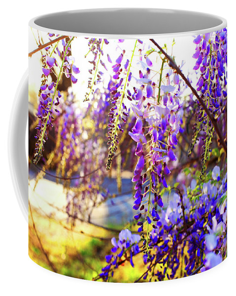 Flowers Coffee Mug featuring the photograph In The Evening by Toni Hopper