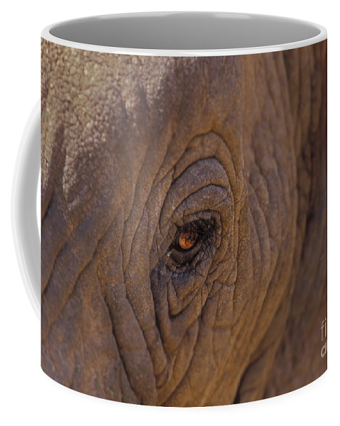 Elephant Coffee Mug featuring the photograph In The Eye Of The Elephant by Sandra Bronstein