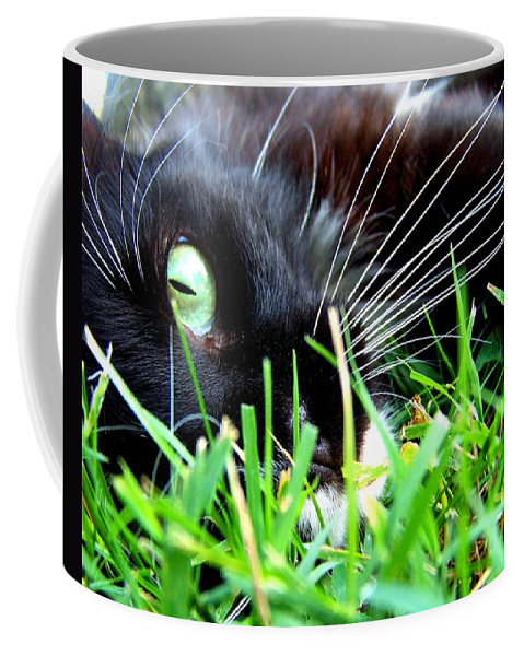 Cat Coffee Mug featuring the photograph In The Grass by Jai Johnson