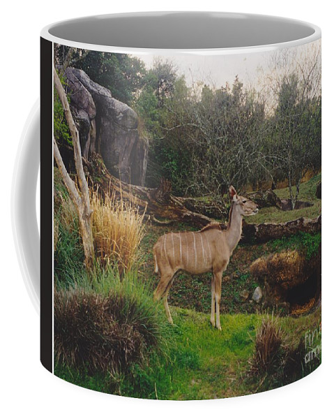 Scenery Coffee Mug featuring the photograph In The Jungle by Michelle Powell