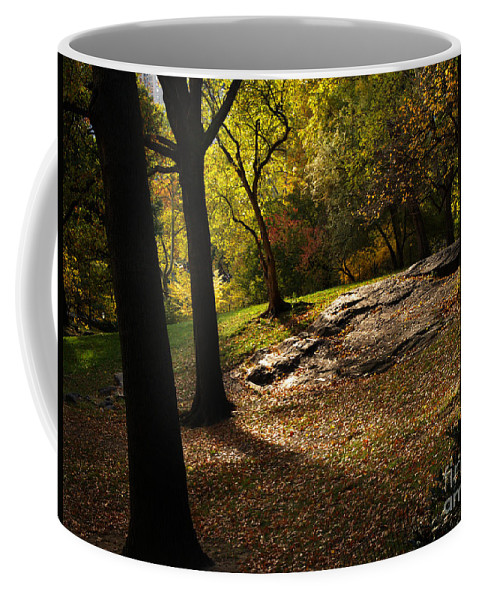 Central Park Coffee Mug featuring the photograph In The Magical Light 2 by Dorothy Lee