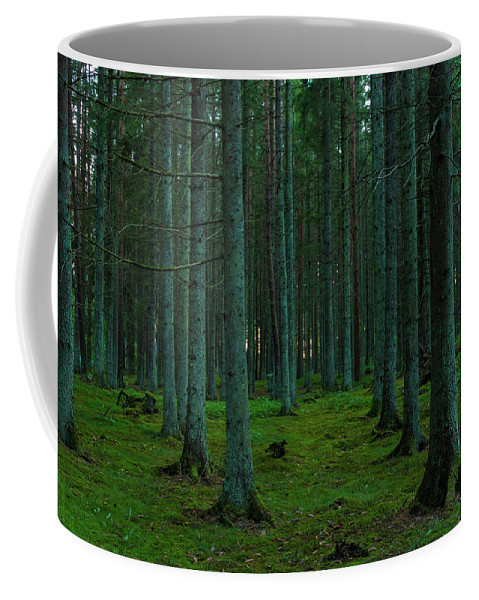 Outdoor Coffee Mug featuring the photograph In The Middle Of The Forest by Andreas Hoff