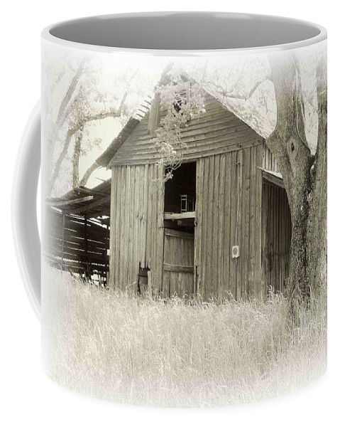 Barn Coffee Mug featuring the photograph In The Pecan Orchard by Nelson Strong
