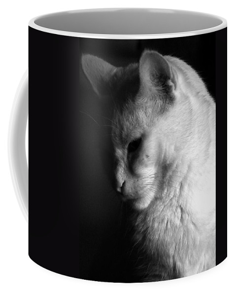 Nature Coffee Mug featuring the photograph In The Shadows by Bob Orsillo