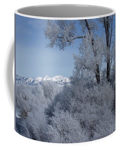 Fog Coffee Mug featuring the photograph In The Shadows Of The Fog by DeeLon Merritt