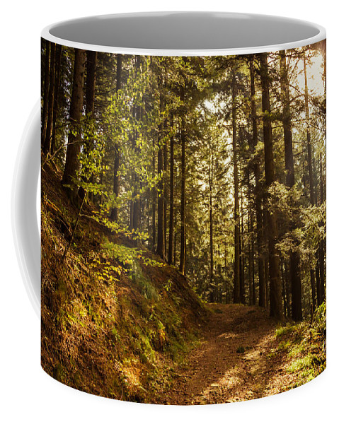 Nature Coffee Mug featuring the photograph In The Woods by Mirko Chianucci