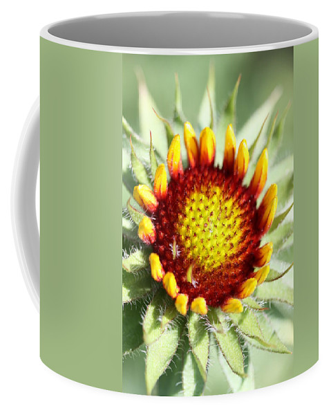 Indian Blanket Coffee Mug featuring the photograph Inception by Christiane Schulze Art And Photography