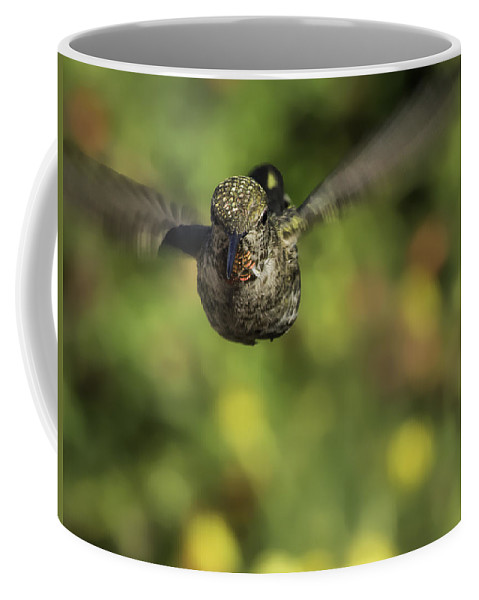 Early Morning Coffee Mug featuring the photograph Incoming by Mike Herdering