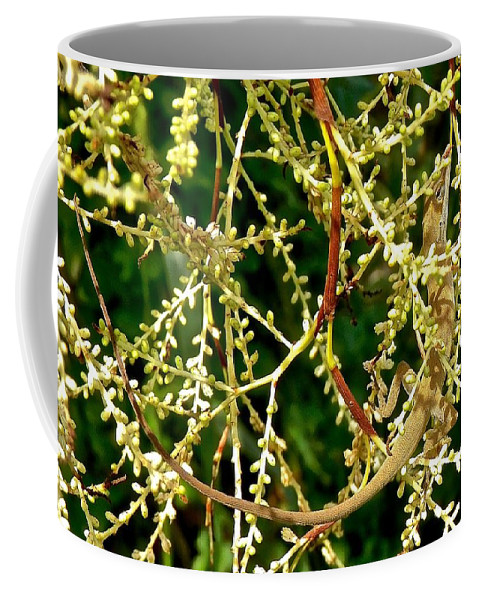 Anole Coffee Mug featuring the photograph Inconspicuous Lizard by Joe Wyman
