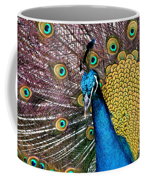 Aloha Coffee Mug featuring the photograph Indian Blue Peacock by Sharon Mau