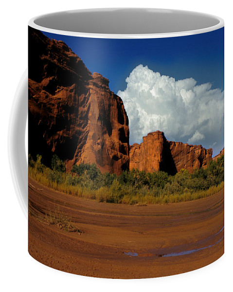 Horses Coffee Mug featuring the photograph Indian Ponies In The Canyon by Jerry McElroy