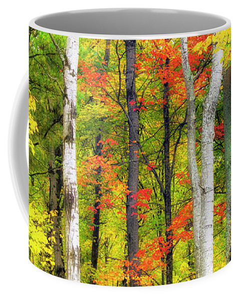 Indian Summer Coffee Mug featuring the photograph Indian Summer by Christina Rollo
