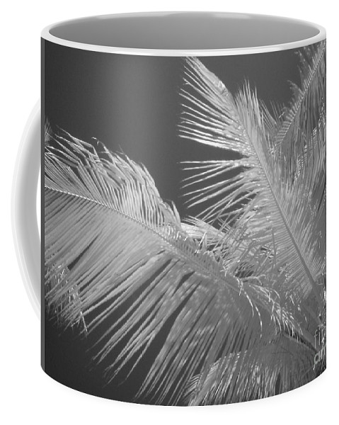 Infrared Coffee Mug featuring the photograph Infrared Palm Trees by Chad Kroll
