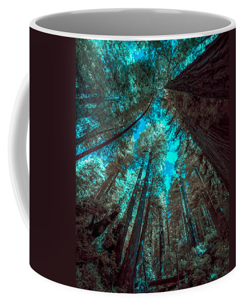Infrared Redwood Coffee Mug featuring the photograph Infrared Redwood by Paul Freidlund