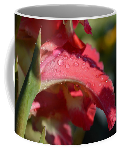 Fresh Flowers Coffee Mug featuring the photograph Innocence by Dianne Cowen