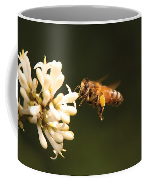 Savad Coffee Mug featuring the photograph Insect - Bee - Honey I'm Home by Mike Savad