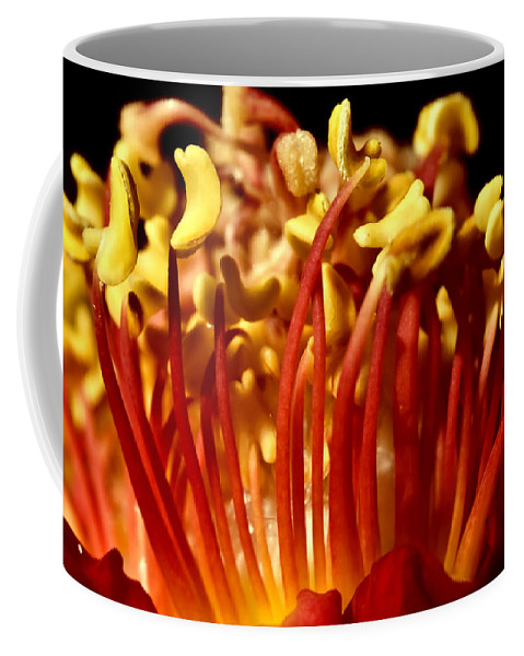 Red Coffee Mug featuring the photograph Inside Rose by Svetlana Sewell