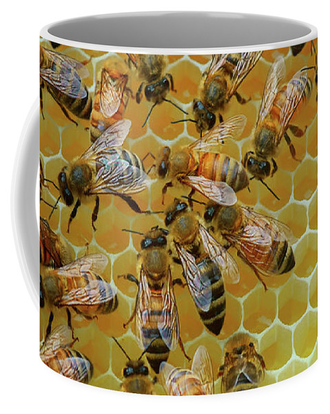 Bees Coffee Mug featuring the photograph Inside the Hive by Nikolyn McDonald