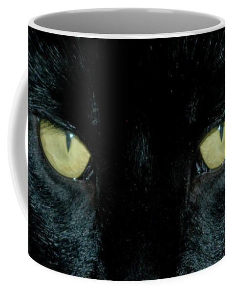 Cat Coffee Mug featuring the photograph Intensity by Alynne Landers