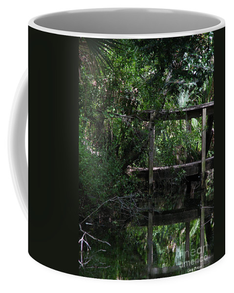 Woods Coffee Mug featuring the photograph Into Green by Greg Patzer