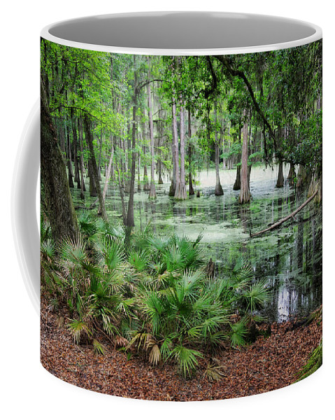 Swamp Coffee Mug featuring the photograph Into The Green Swamp by Carol Groenen