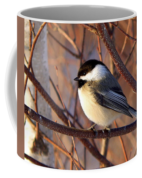 Into The Sunset Coffee Mug featuring the photograph Into The Sunset by Karen Cook
