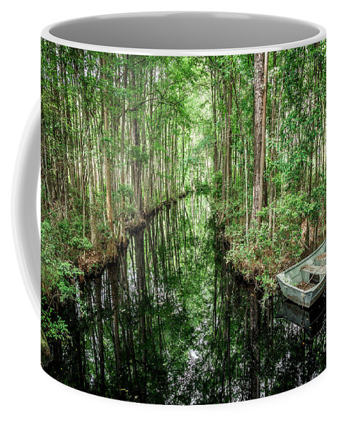 Swamp Coffee Mug featuring the photograph Into The Swamp by Joan McCool