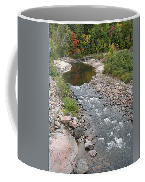 Water Coffee Mug featuring the photograph Into The Woods by Kelly Mezzapelle