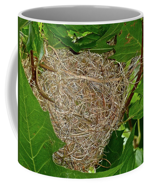 Birds Coffee Mug featuring the photograph Intricate Nest by Diana Hatcher