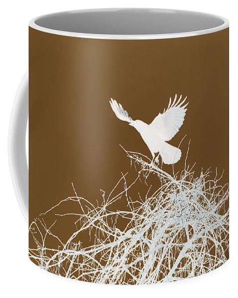 Bird Coffee Mug featuring the photograph Inverted Crow by Deborah Benoit