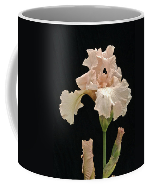 Flower Coffee Mug featuring the photograph Iris 2 by Michael Peychich