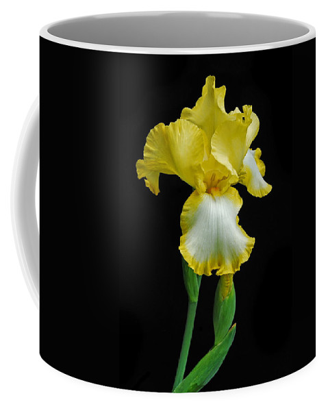 Flower Coffee Mug featuring the photograph Iris 4 by Michael Peychich