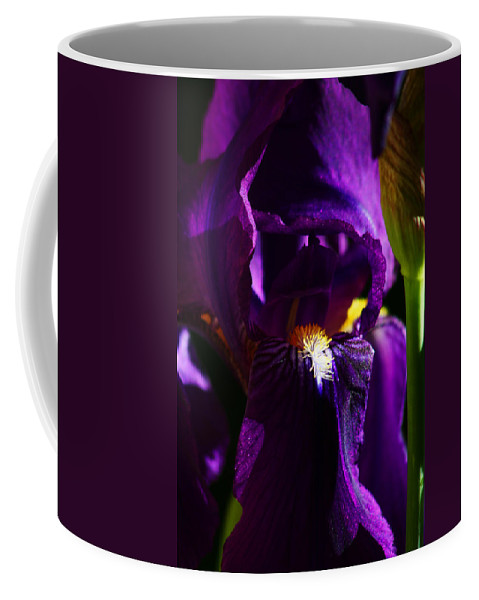 Flower Coffee Mug featuring the photograph Iris by Anthony Jones