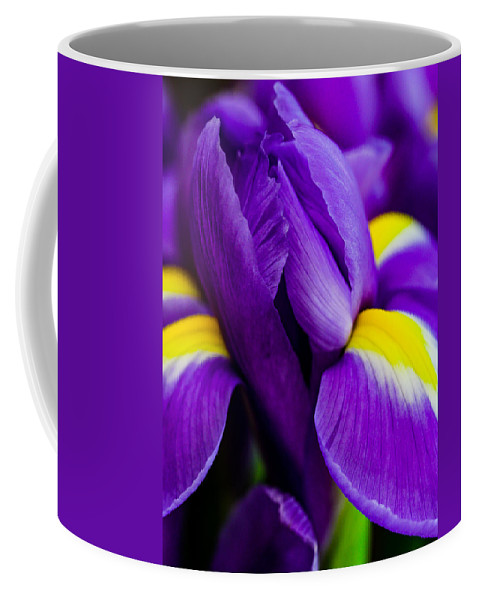 Iris Coffee Mug featuring the photograph Iris Detail 2 by Mo Barton
