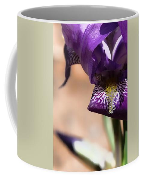 Iris Coffee Mug featuring the photograph Iris Gemanica by Patricia Montgomery