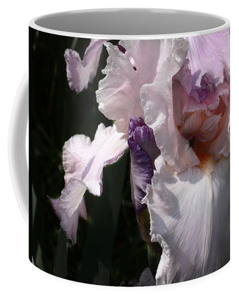 Flower Coffee Mug featuring the photograph Iris Lace by Steve Karol