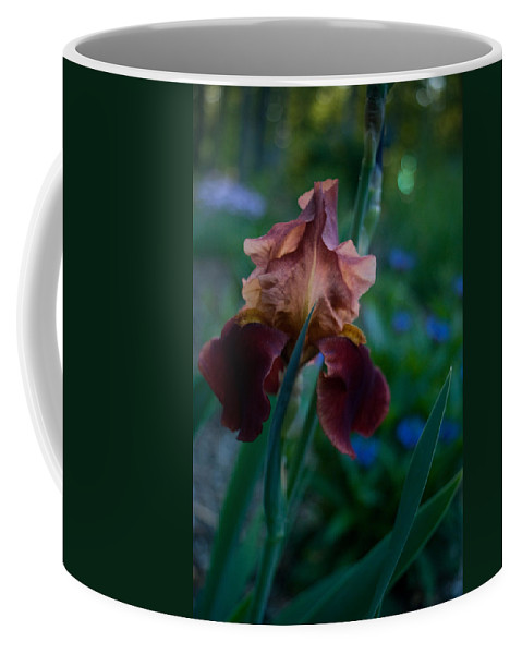Iris Coffee Mug featuring the photograph Iris Passion by Douglas Barnett
