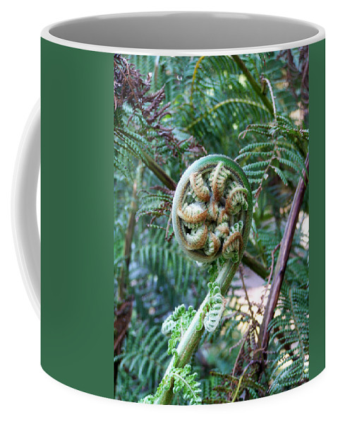 Irish Coffee Mug featuring the photograph Irish Fiddler by Teresa Mucha