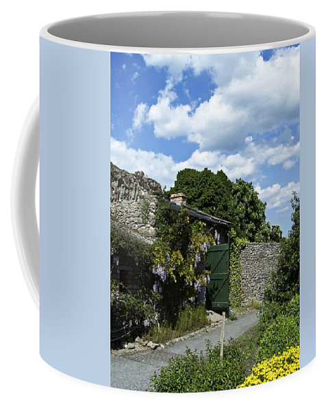 Irish Coffee Mug featuring the photograph Irish Garden County Clare by Teresa Mucha