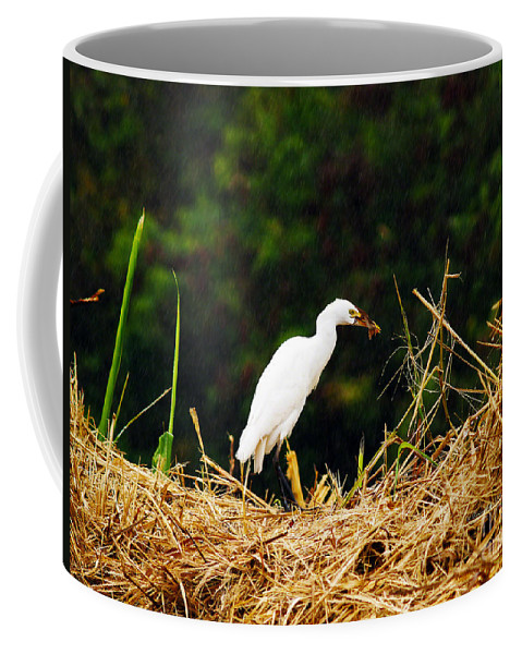 Fine Art Photography Coffee Mug featuring the photograph It Was A Bad Day For Bats I by Patricia Griffin Brett