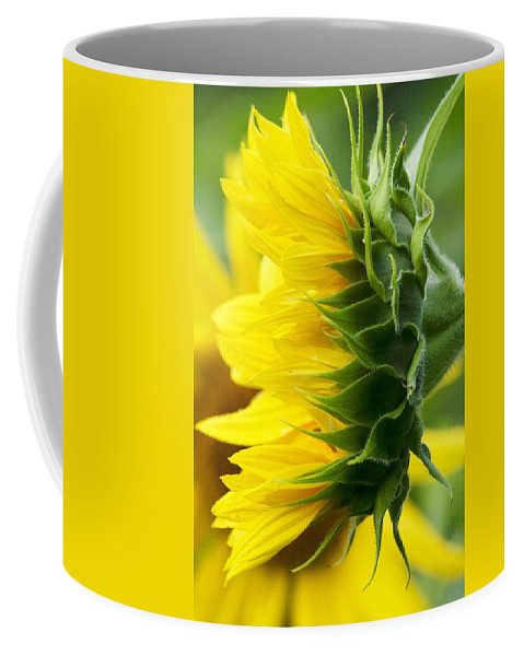 Flower Coffee Mug featuring the photograph It's All About The View by Tiffany Erdman
