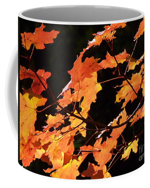 Creeks Coffee Mug featuring the photograph It's Fall by Kathy McClure