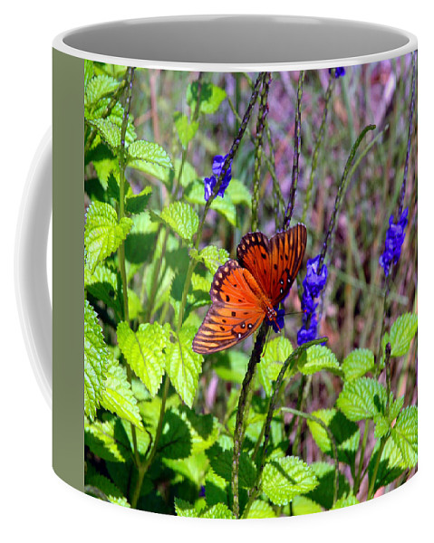 Butterfly Coffee Mug featuring the photograph Its Summer by Susanne Van Hulst