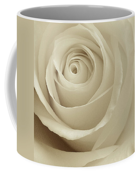 Sepia Rose Coffee Mug featuring the photograph Ivory Rose by Don Spenner