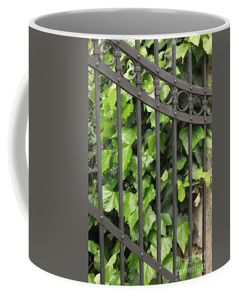 Ivy And Iron Gate Coffee Mug featuring the photograph Ivy And Gate by Carol Groenen
